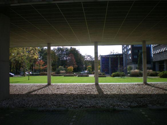 8-3-'15Lennarium 101_0015_resized